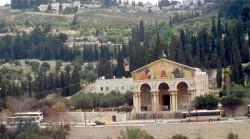 رحله القدس من شرم الشيخ