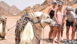 ركوب الخيل في شرم الشيخ